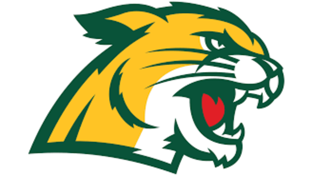 Northern Michigan Wildcats hockey ranked for first time since 2014