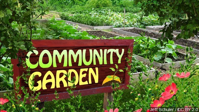 Marquette Breakfast Rotary uses community garden to promote sustainability to youth groups